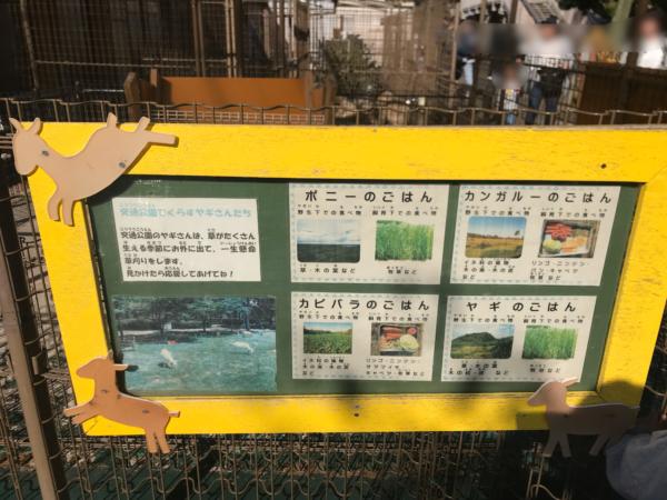 浦安市交通公園の動物たち