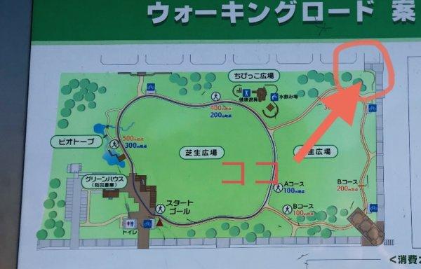 弁天ふれあいの森公園